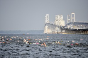 BaySwim_061310_swimmersbridge2