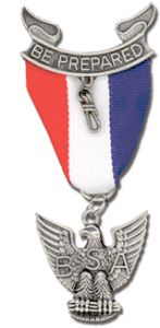 e-scout-medal