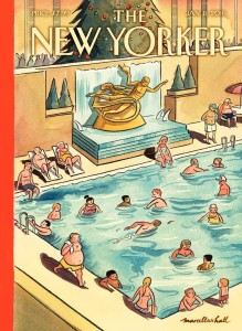 New Yorker swimming pool cover